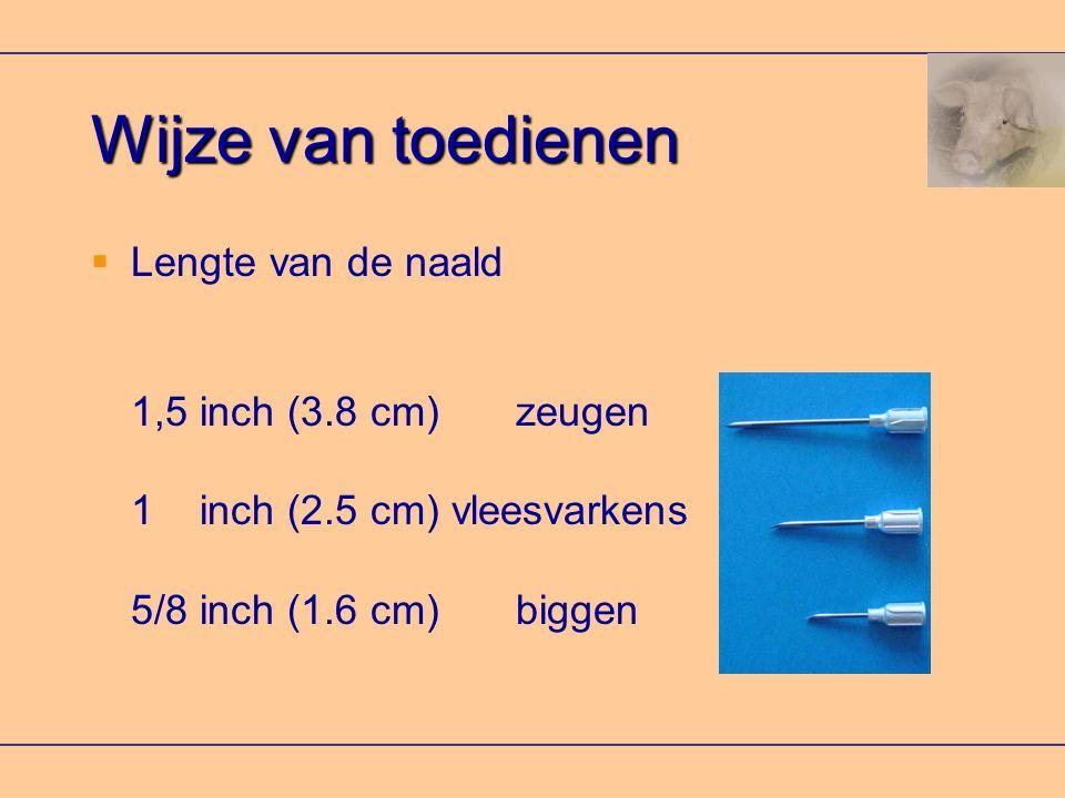 Wijze van toedienen  Lengte van de naald 1,5 inch (3.8 cm) zeugen 1 inch (2.5 cm) vleesvarkens 5/8 inch (1.6 cm) biggen