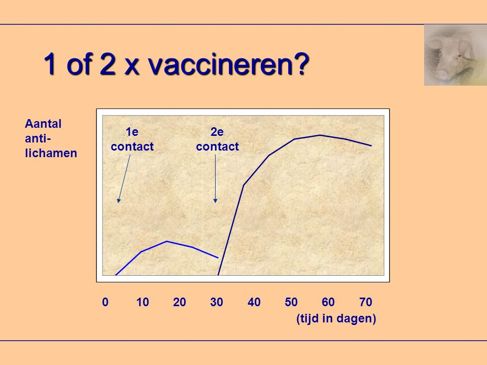 1 of 2 x vaccineren? Aantal anti- lichamen 0 10 20 30 40 50 60 70 (tijd in dagen) 1e contact 2e contact