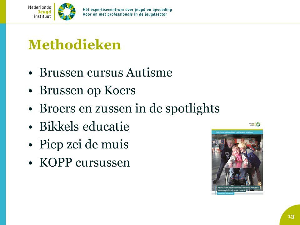 Methodieken Brussen cursus Autisme Brussen op Koers Broers en zussen in de spotlights Bikkels educatie Piep zei de muis KOPP cursussen 13