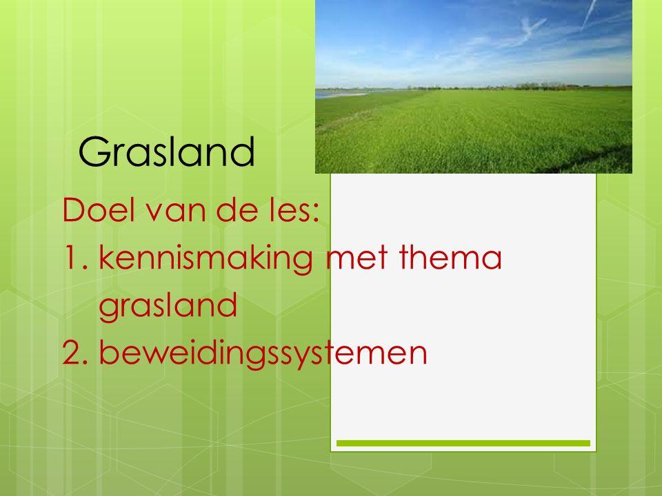 Grasland Doel van de les: 1. kennismaking met thema grasland 2. beweidingssystemen