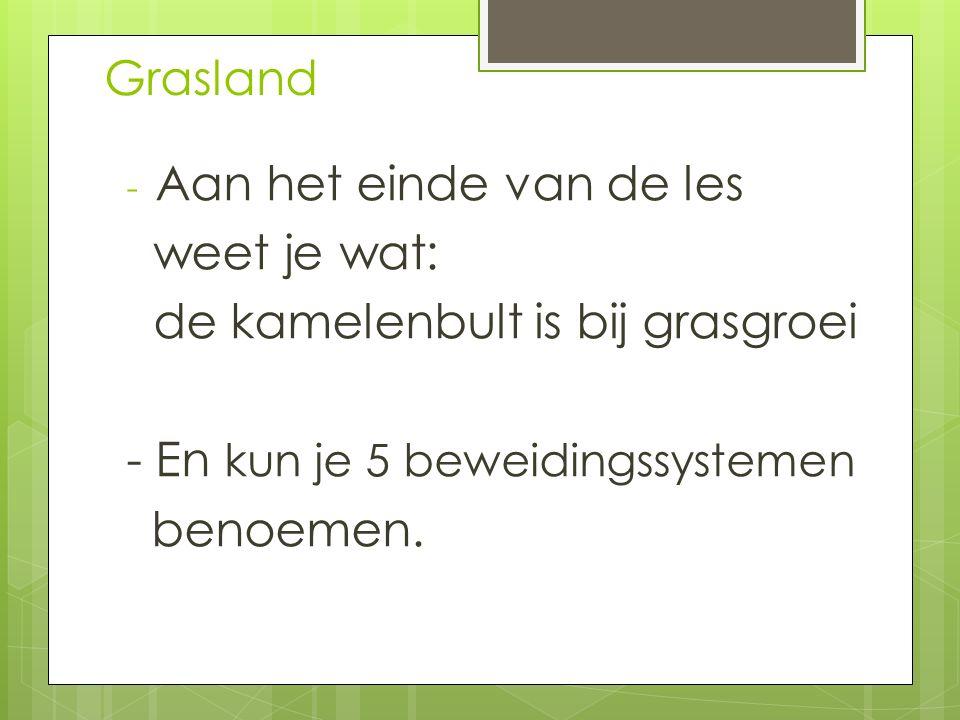Grasland h4  8,5 kg ds x 100 koeien = 850 kg ds  850 x 4 dagen x 120 % (20% verlies) =  4.080 kg ds  1700 kg ds+ 4 x 50 kg ds = 1.900 kg ds  Benodigd 4.080/1.900 = 2.15 ha