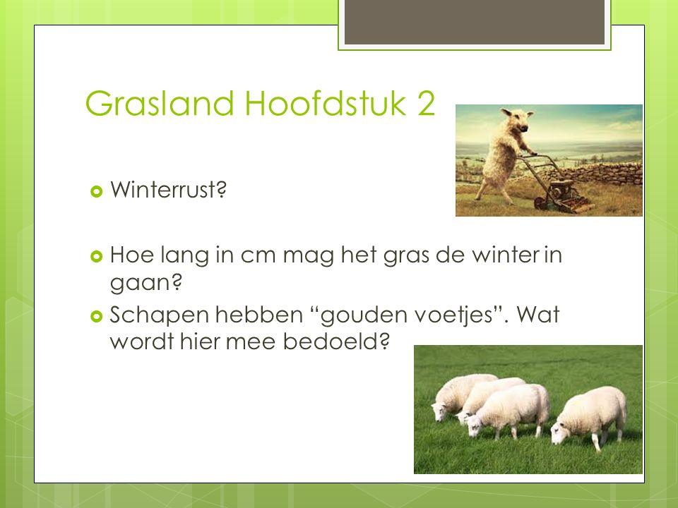 """Grasland Hoofdstuk 2  Winterrust?  Hoe lang in cm mag het gras de winter in gaan?  Schapen hebben """"gouden voetjes"""". Wat wordt hier mee bedoeld?"""