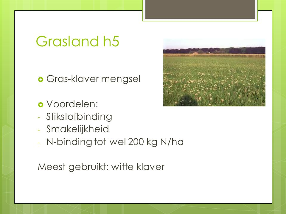Grasland h5  Gras-klaver mengsel  Voordelen: - Stikstofbinding - Smakelijkheid - N-binding tot wel 200 kg N/ha Meest gebruikt: witte klaver