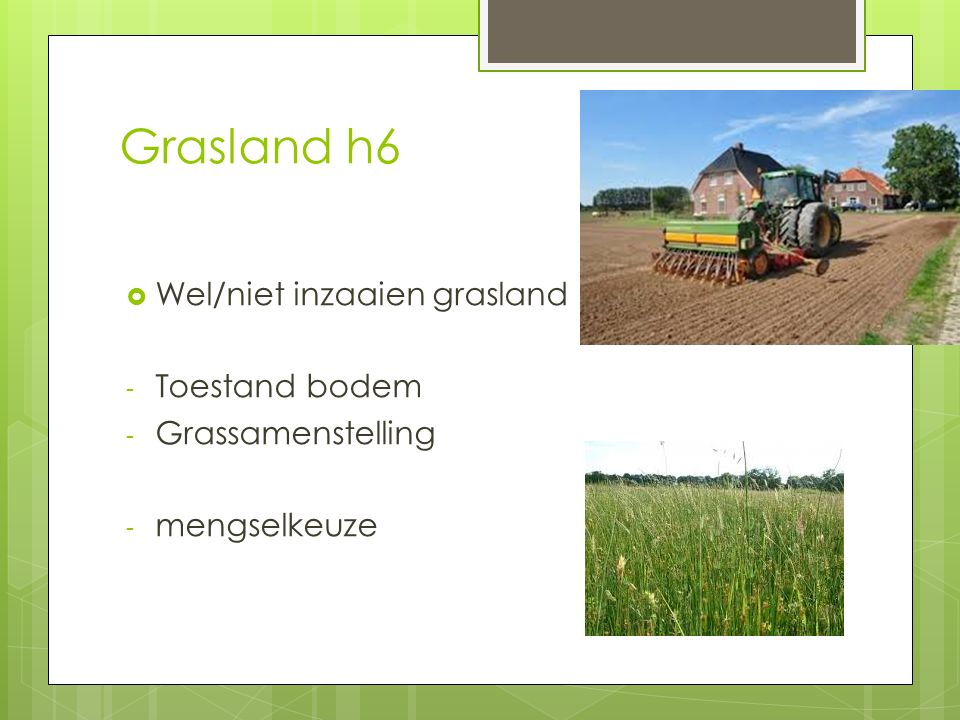 Grasland h6  Wel/niet inzaaien grasland - Toestand bodem - Grassamenstelling - mengselkeuze