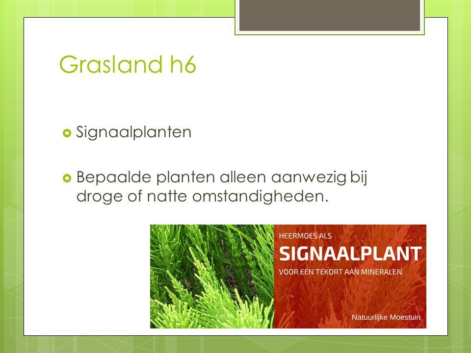 Grasland h6  Signaalplanten  Bepaalde planten alleen aanwezig bij droge of natte omstandigheden.