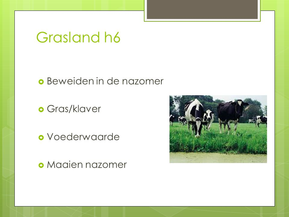 Grasland h6  Beweiden in de nazomer  Gras/klaver  Voederwaarde  Maaien nazomer