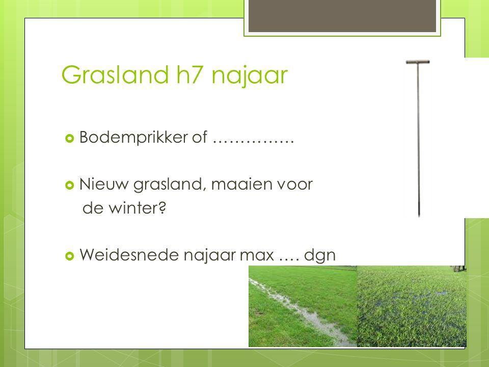 Grasland h7 najaar  Bodemprikker of ……………  Nieuw grasland, maaien voor de winter?  Weidesnede najaar max …. dgn