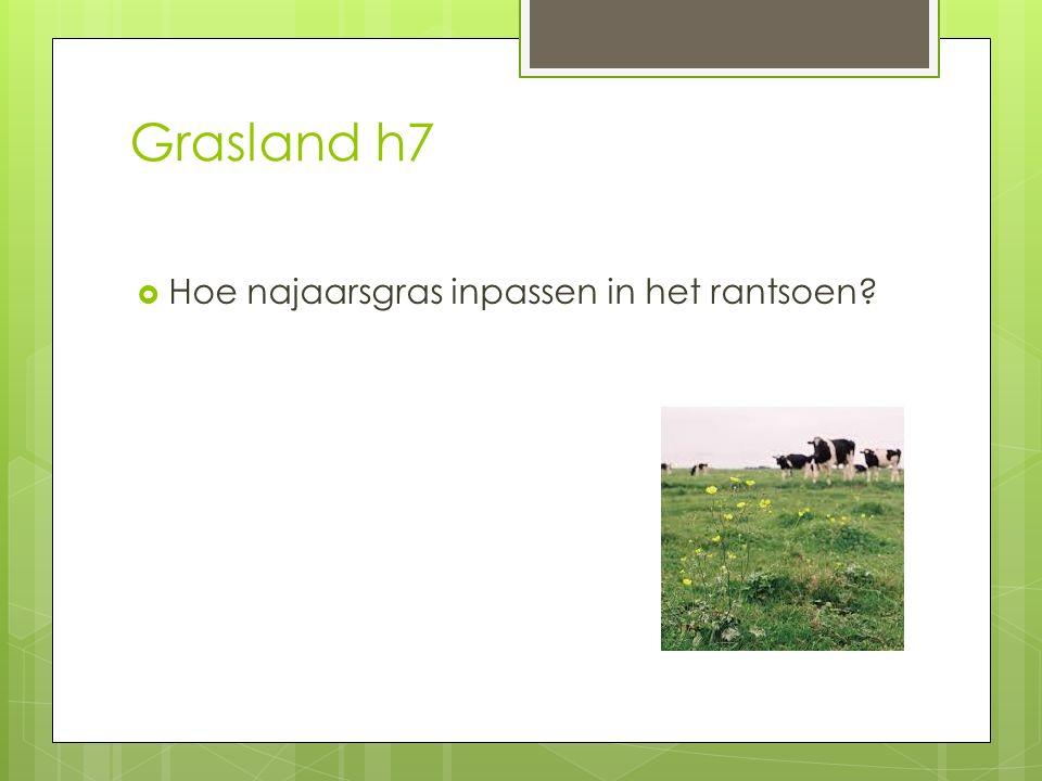 Grasland h7  Hoe najaarsgras inpassen in het rantsoen?