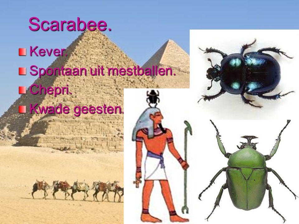 Nefertiti.De mooie vrouw is gekomen.1336 verdwijning.