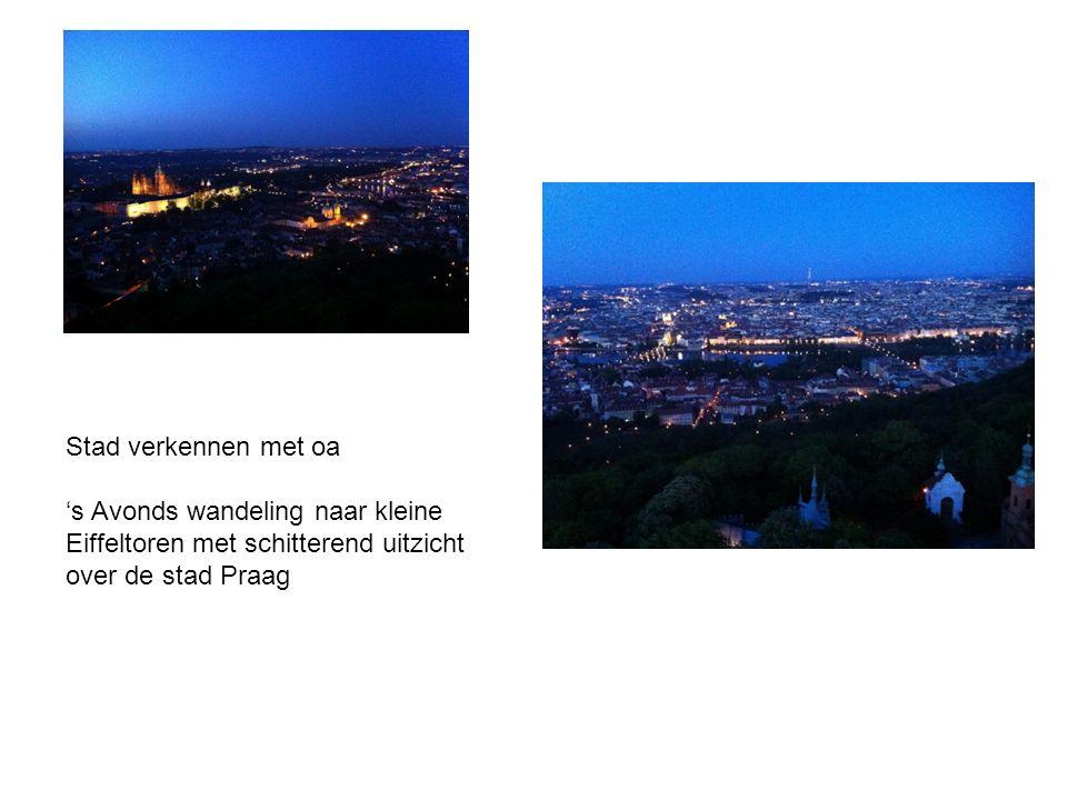 Stad verkennen met oa 's Avonds wandeling naar kleine Eiffeltoren met schitterend uitzicht over de stad Praag