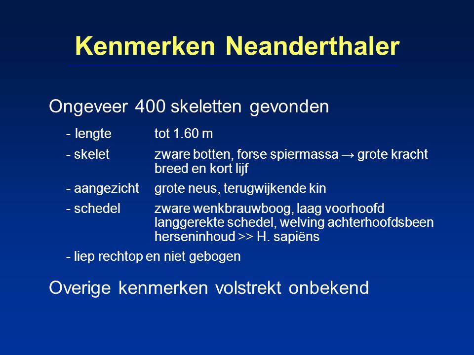 Kenmerken Neanderthaler Ongeveer 400 skeletten gevonden - lengte tot 1.60 m - skelet zware botten, forse spiermassa → grote kracht breed en kort lijf