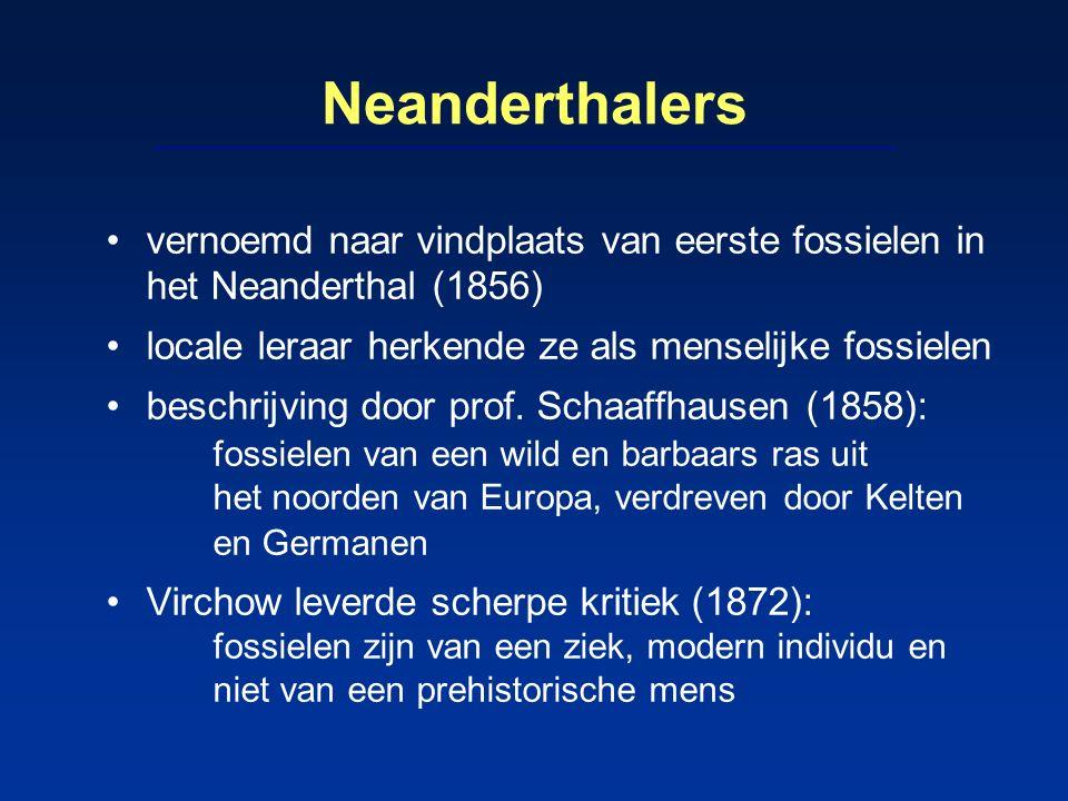 Neanderthalers vernoemd naar vindplaats van eerste fossielen in het Neanderthal (1856) locale leraar herkende ze als menselijke fossielen beschrijving