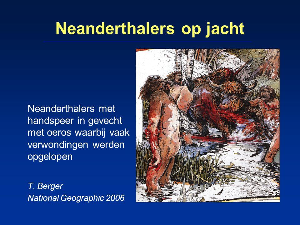 Neanderthalers op jacht Neanderthalers met handspeer in gevecht met oeros waarbij vaak verwondingen werden opgelopen T. Berger National Geographic 200