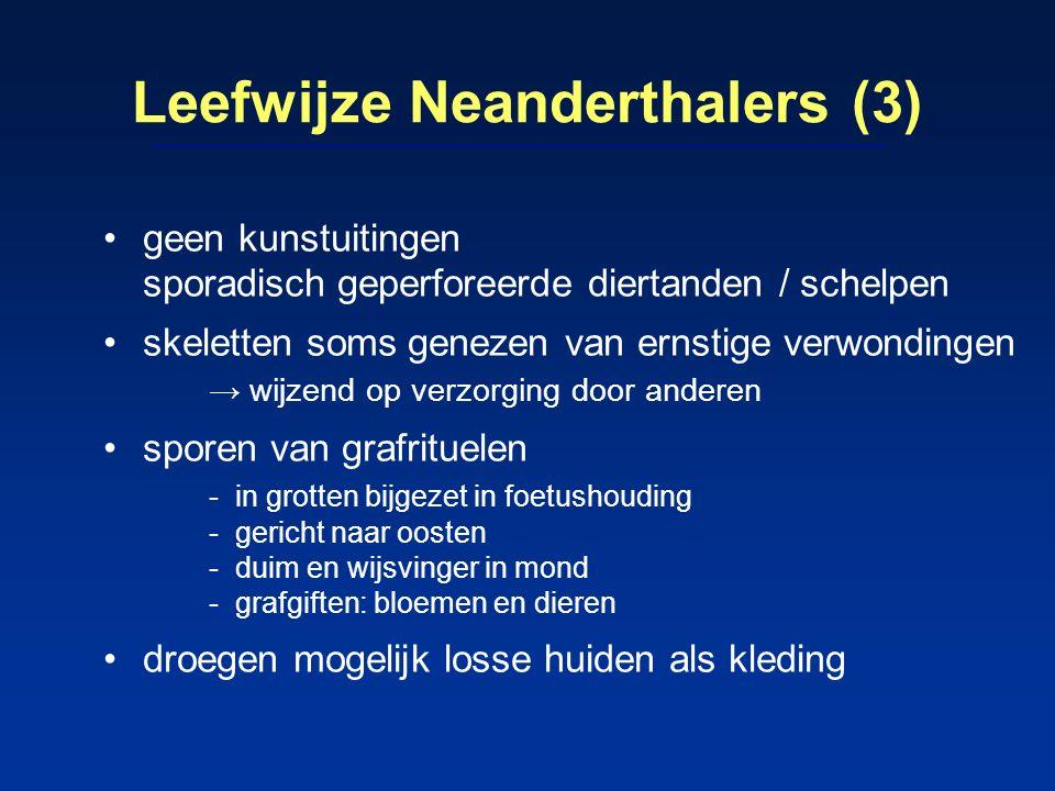 Leefwijze Neanderthalers (3) geen kunstuitingen sporadisch geperforeerde diertanden / schelpen skeletten soms genezen van ernstige verwondingen → wijz