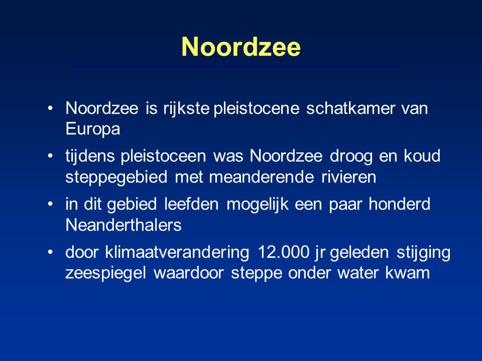Noordzee Noordzee is rijkste pleistocene schatkamer van Europa tijdens pleistoceen was Noordzee droog en koud steppegebied met meanderende rivieren in