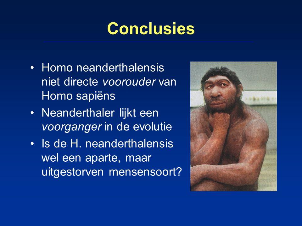 Conclusies Homo neanderthalensis niet directe voorouder van Homo sapiëns Neanderthaler lijkt een voorganger in de evolutie Is de H. neanderthalensis w