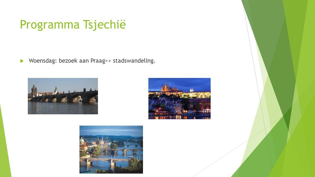 Programma Tsjechië  Woensdag: bezoek aan Praag>> stadswandeling.
