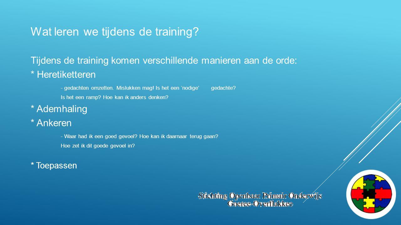 Wat leren we tijdens de training? Tijdens de training komen verschillende manieren aan de orde: * Heretiketteren - gedachten omzetten. Mislukken mag!
