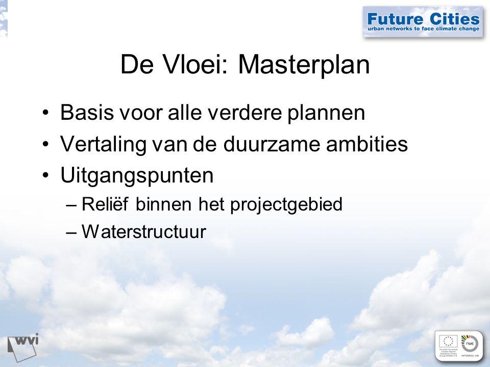 De Vloei: Masterplan Basis voor alle verdere plannen Vertaling van de duurzame ambities Uitgangspunten –Reliëf binnen het projectgebied –Waterstructuur