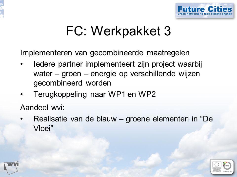 FC: Werkpakket 3 Implementeren van gecombineerde maatregelen Iedere partner implementeert zijn project waarbij water – groen – energie op verschillende wijzen gecombineerd worden Terugkoppeling naar WP1 en WP2 Aandeel wvi: Realisatie van de blauw – groene elementen in De Vloei