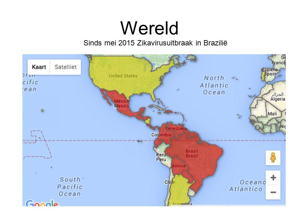Wereld Sinds mei 2015 Zikavirusuitbraak in Brazilië