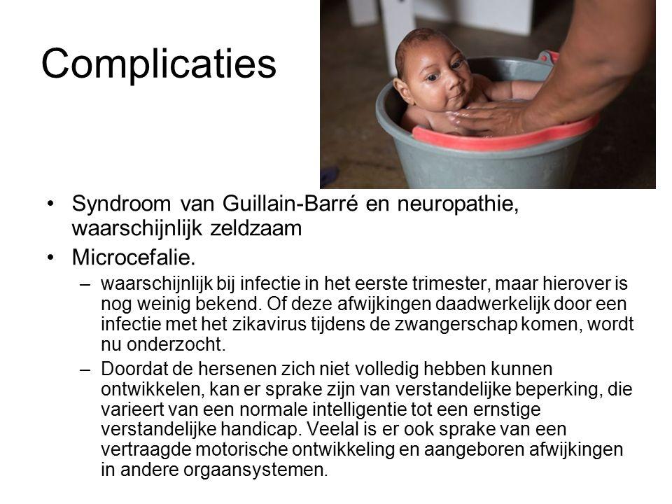 Complicaties Syndroom van Guillain-Barré en neuropathie, waarschijnlijk zeldzaam Microcefalie.