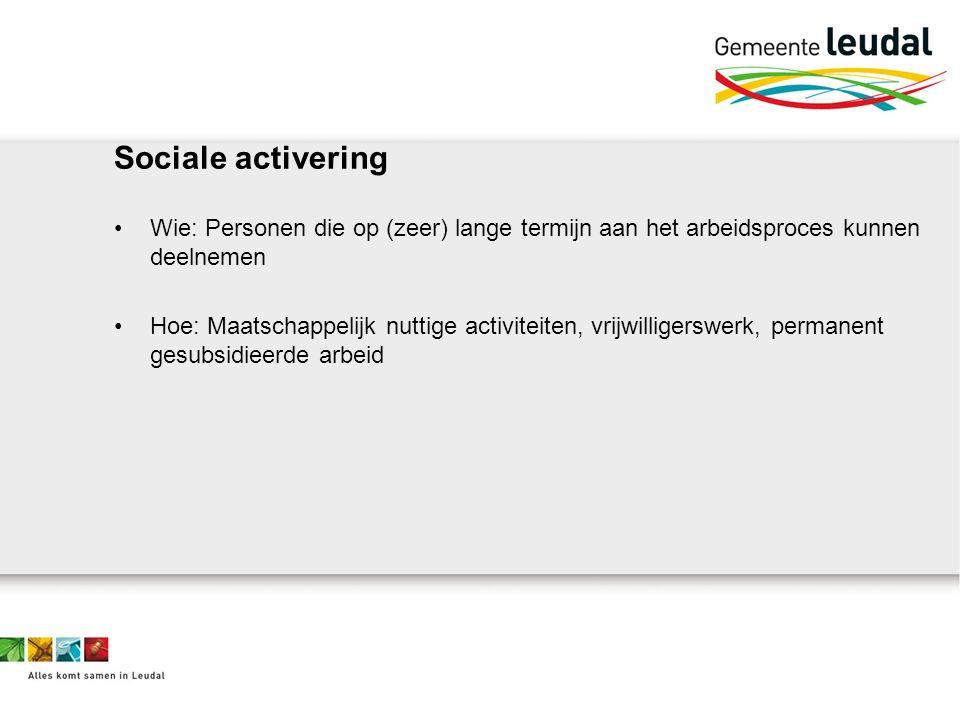 Sociale activering Wie: Personen die op (zeer) lange termijn aan het arbeidsproces kunnen deelnemen Hoe: Maatschappelijk nuttige activiteiten, vrijwilligerswerk, permanent gesubsidieerde arbeid