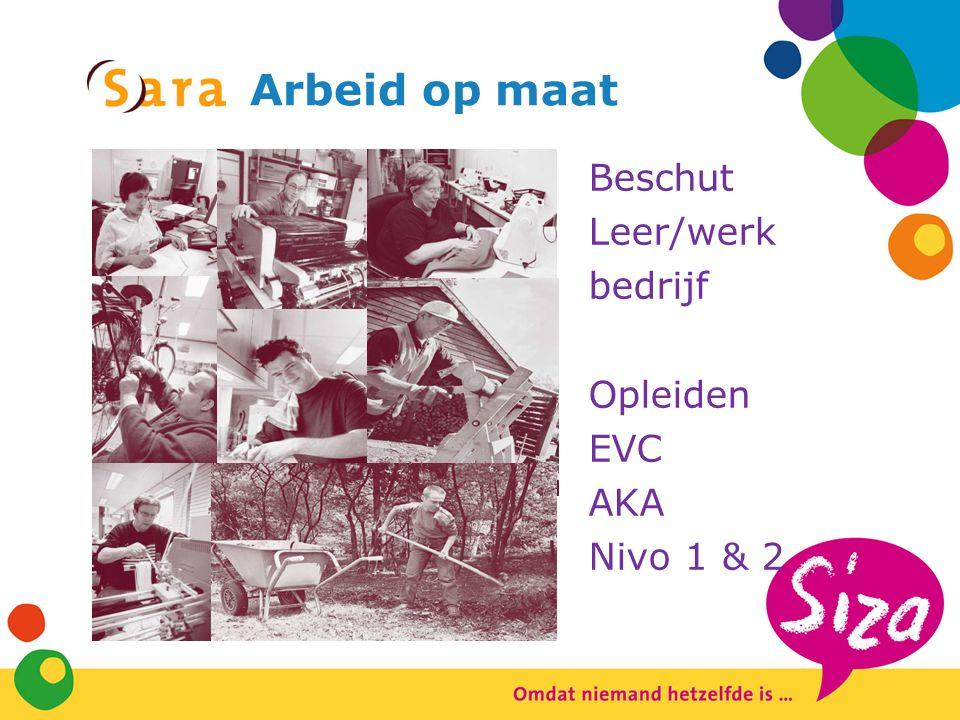Arbeid op maat Beschut Leer/werk bedrijf Opleiden EVC AKA Nivo 1 & 2