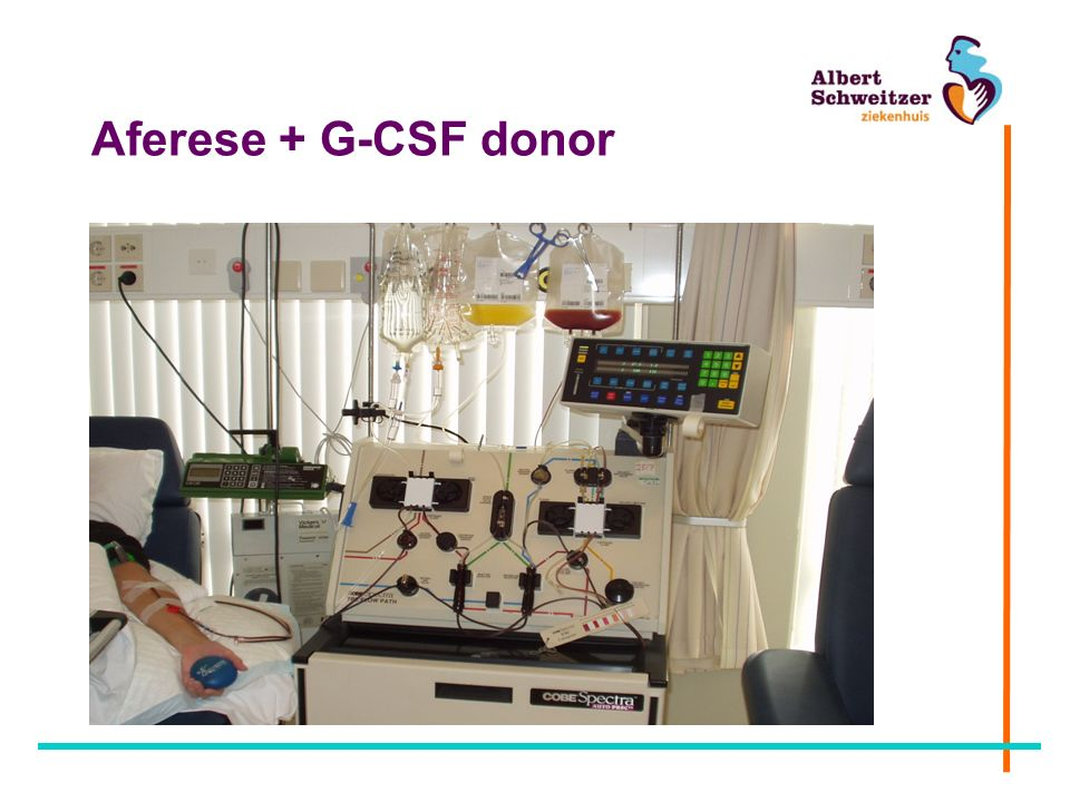 Aferese + G-CSF donor