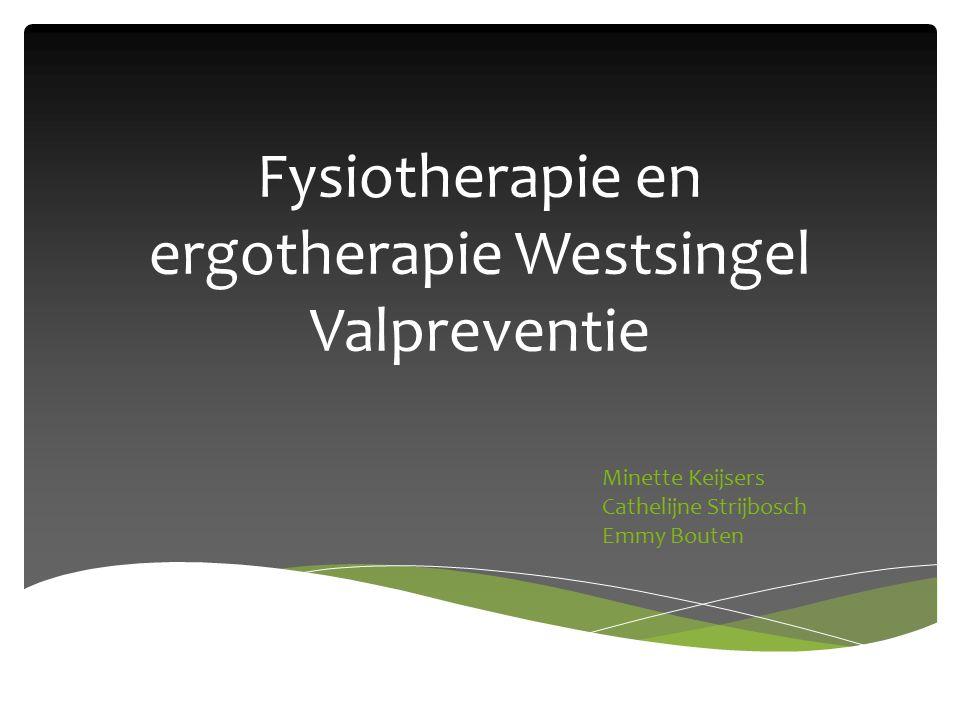 Fysiotherapie en ergotherapie Westsingel Valpreventie Minette Keijsers Cathelijne Strijbosch Emmy Bouten