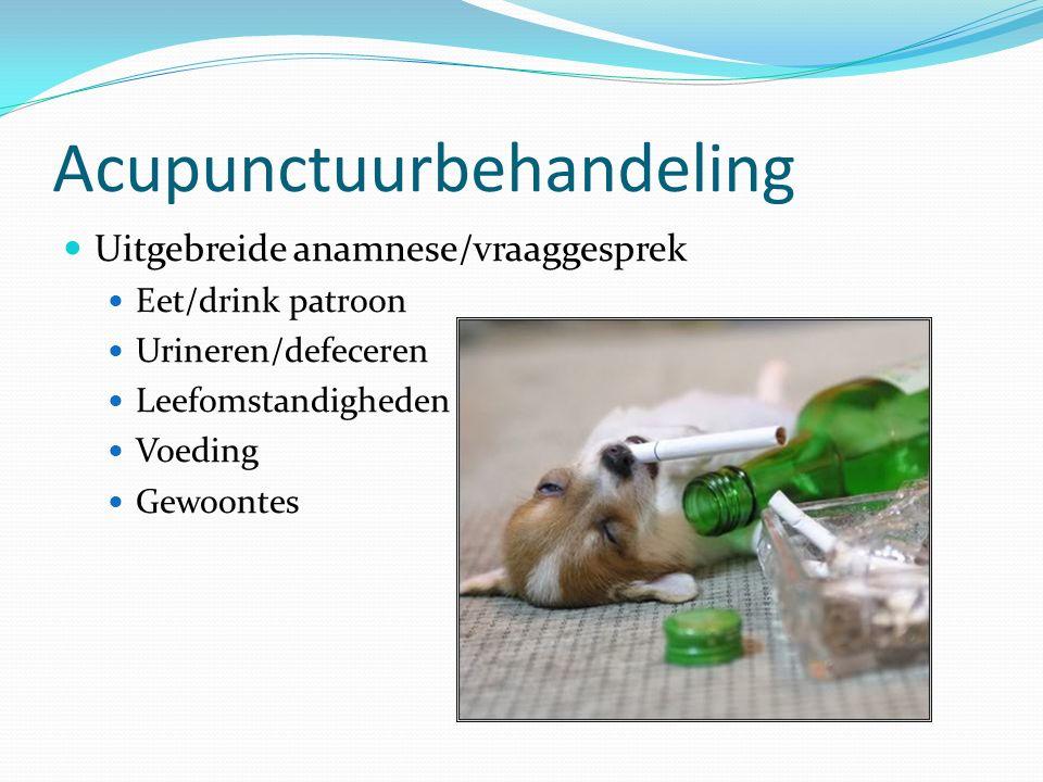 Acupunctuurbehandeling Uitgebreide anamnese/vraaggesprek Eet/drink patroon Urineren/defeceren Leefomstandigheden Voeding Gewoontes