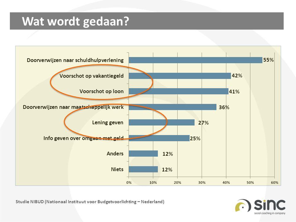 Wat wordt gedaan? Studie NIBUD (Nationaal Instituut voor Budgetvoorlichting – Nederland)