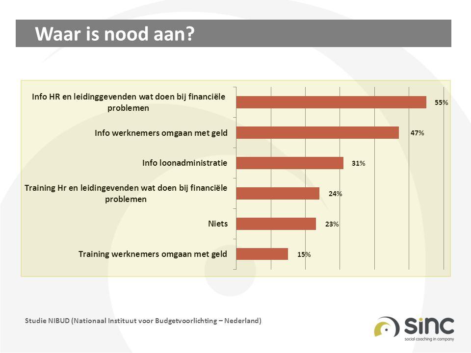 Waar is nood aan? Studie NIBUD (Nationaal Instituut voor Budgetvoorlichting – Nederland)