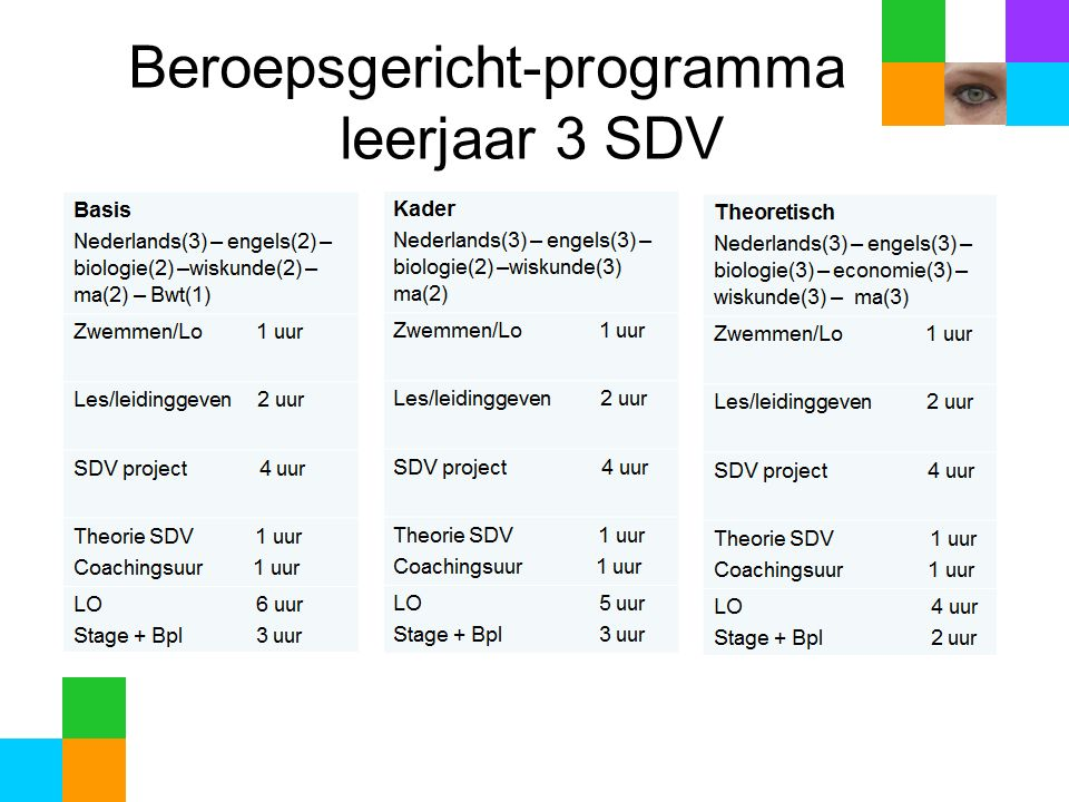 Beroepsgericht-programma. leerjaar 3 SDV