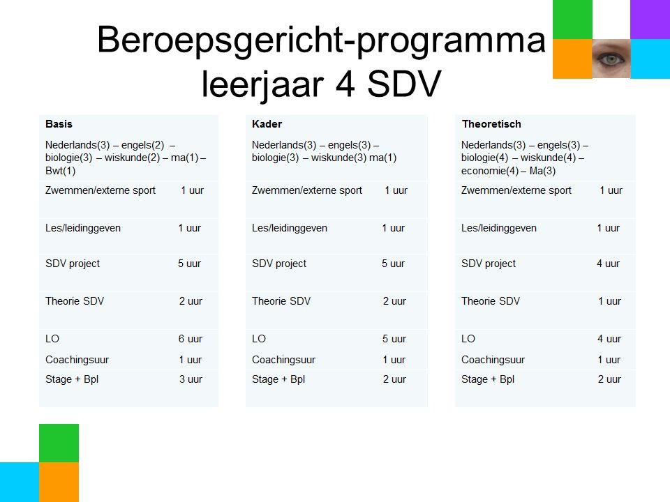 Beroepsgericht-programma leerjaar 4 SDV