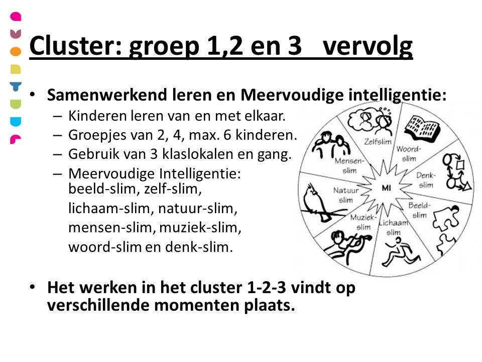 Samenwerkend leren en Meervoudige intelligentie: – Kinderen leren van en met elkaar.