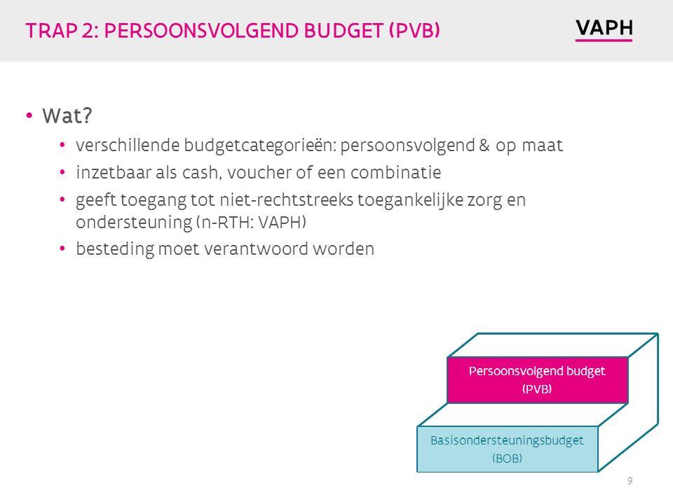 TRAP 2: PERSOONSVOLGEND BUDGET (PVB) Wat.