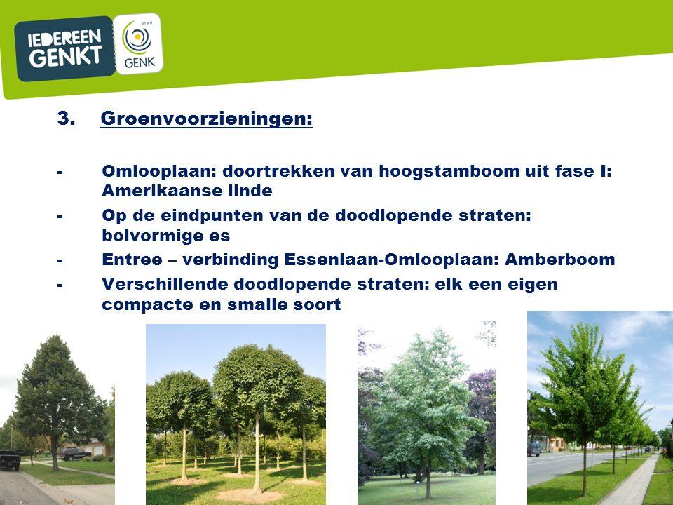 3. Groenvoorzieningen: -Omlooplaan: doortrekken van hoogstamboom uit fase I: Amerikaanse linde -Op de eindpunten van de doodlopende straten: bolvormig