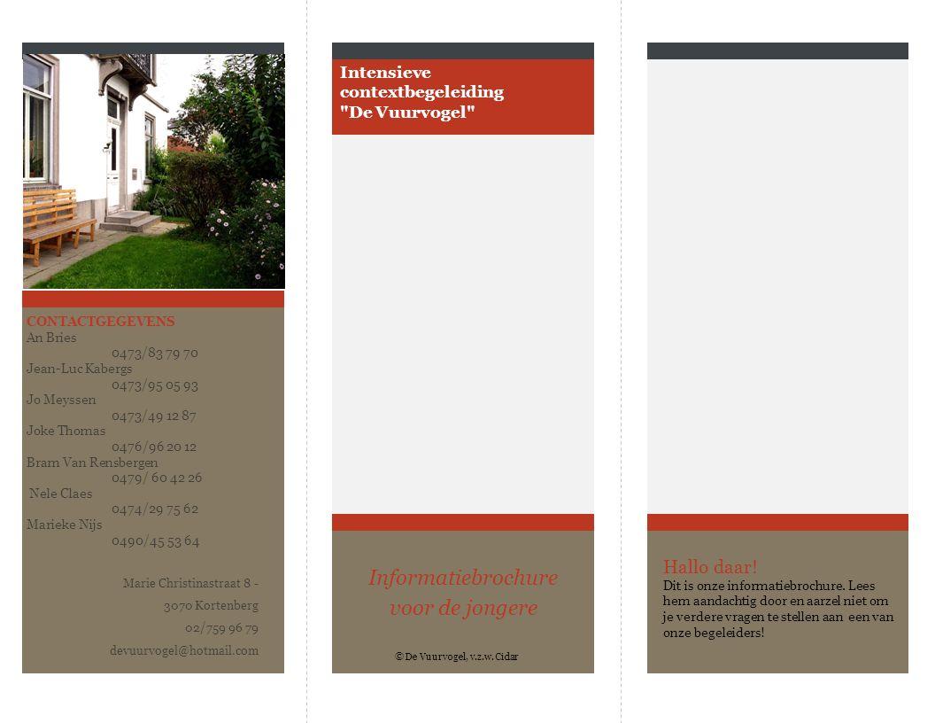 Intensieve contextbegeleiding De Vuurvogel Informatiebrochure voor de jongere Hallo daar.