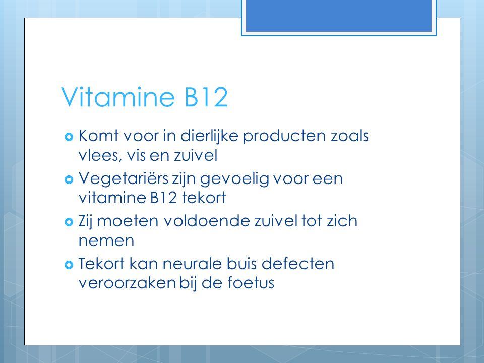 Vitamine B12  Komt voor in dierlijke producten zoals vlees, vis en zuivel  Vegetariërs zijn gevoelig voor een vitamine B12 tekort  Zij moeten voldoende zuivel tot zich nemen  Tekort kan neurale buis defecten veroorzaken bij de foetus