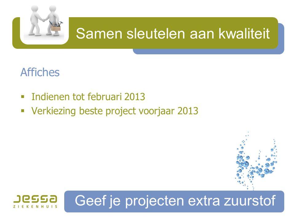 Samen sleutelen aan kwaliteit Geef je projecten extra zuurstof Affiches  Indienen tot februari 2013  Verkiezing beste project voorjaar 2013