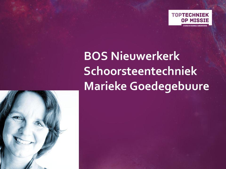 BOS Nieuwerkerk Schoorsteentechniek Marieke Goedegebuure