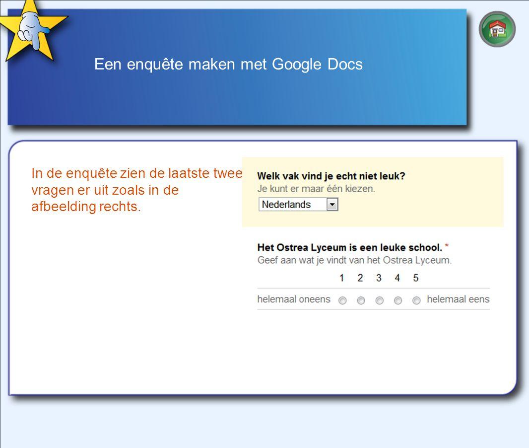 Een enquête maken met Google Docs In de enquête zien de laatste twee vragen er uit zoals in de afbeelding rechts.