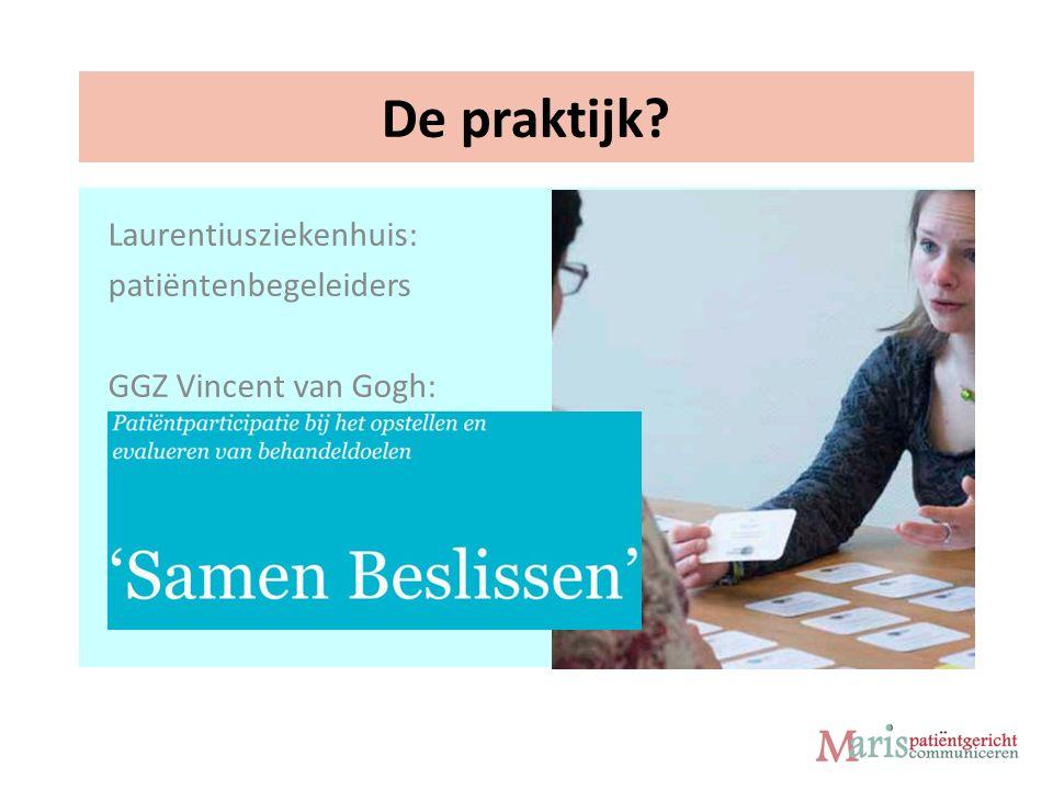 De praktijk Laurentiusziekenhuis: patiëntenbegeleiders GGZ Vincent van Gogh:
