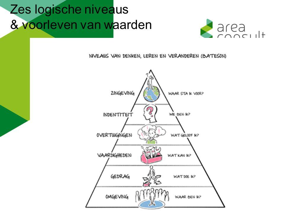 Zes logische niveaus & voorleven van waarden