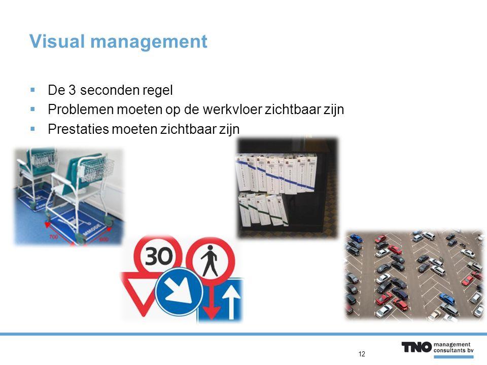  De 3 seconden regel  Problemen moeten op de werkvloer zichtbaar zijn  Prestaties moeten zichtbaar zijn Visual management 12
