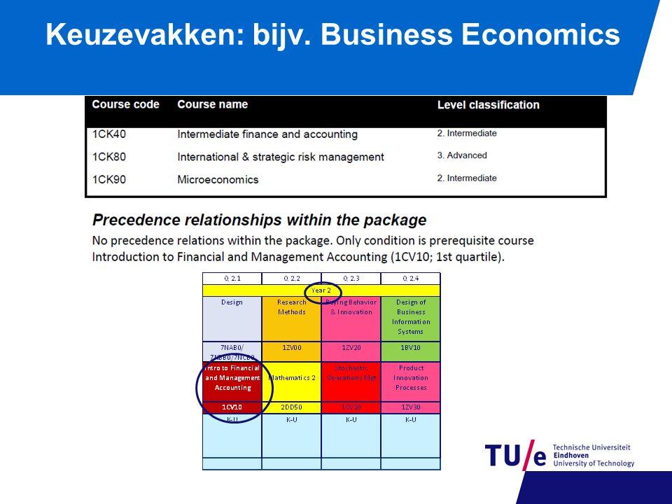 Keuzevakken: bijv. Business Economics