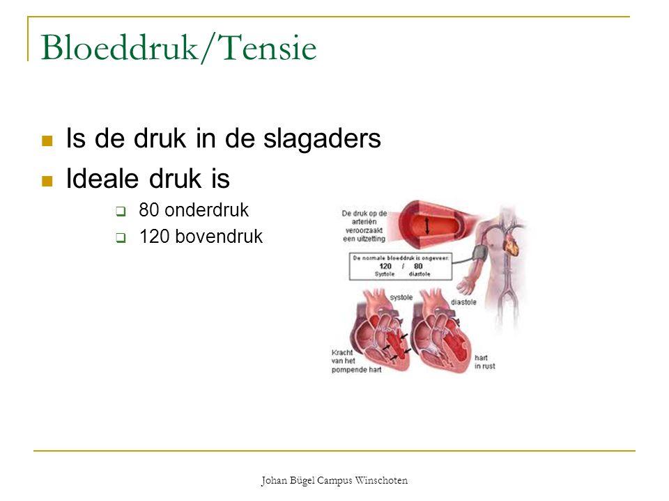 Johan Bügel Campus Winschoten Bloeddruk/Tensie Is de druk in de slagaders Ideale druk is  80 onderdruk  120 bovendruk