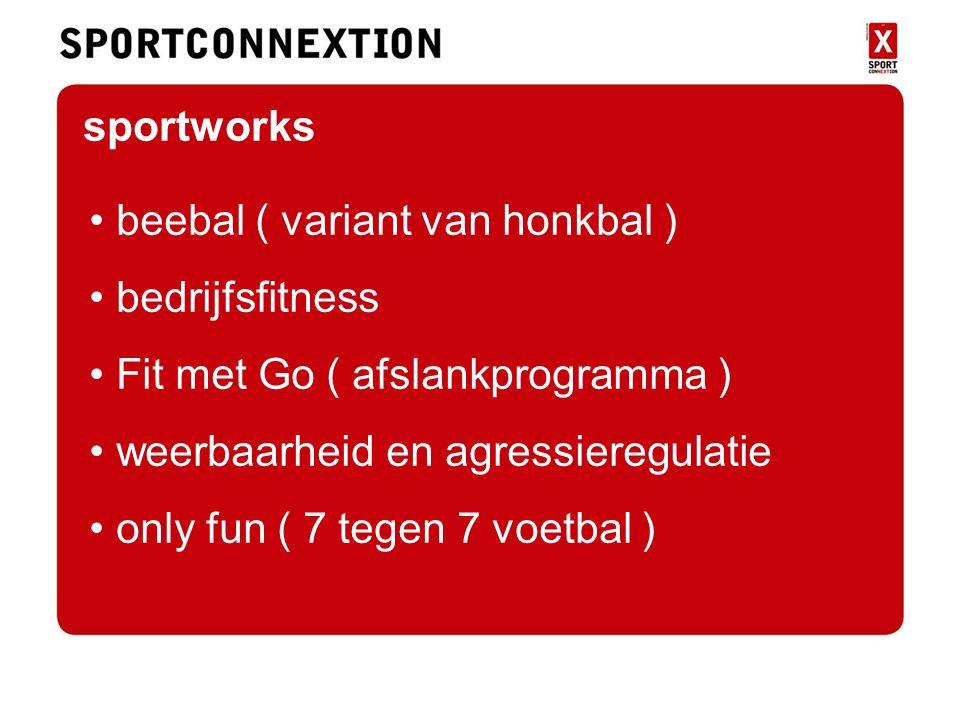 sportworks beebal ( variant van honkbal ) bedrijfsfitness Fit met Go ( afslankprogramma ) weerbaarheid en agressieregulatie only fun ( 7 tegen 7 voetbal )