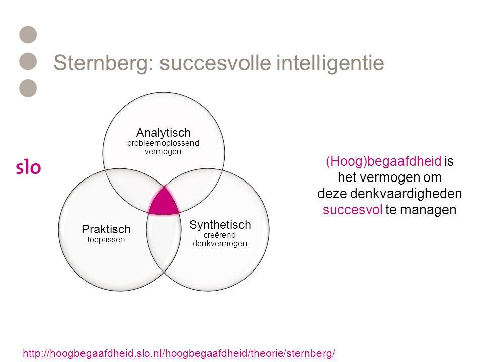 Succesvolle intelligentie Werken met denkprofielen – een voorbeeld